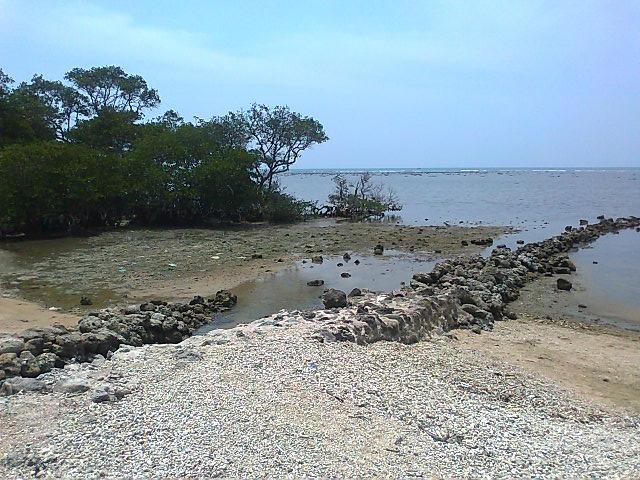 keindahan pantai kutang lamongan